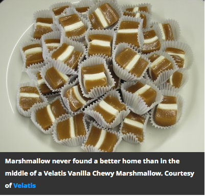 Smithsonian Online Magazine - Candy Land Article